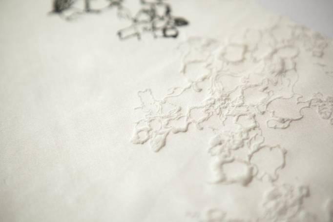 aurélia leblanc printed lace lingerie dentelle